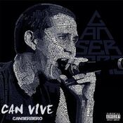 Can Vive