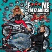 F*** Me I'm Famous 2011 (new version)
