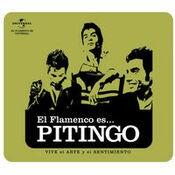 Flamenco es... Pitingo