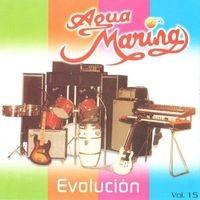 Vol. 15 Evolución