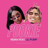 Pookie (feat. Lil Pump) (Remix)