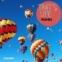 That's Life (Radio Edit)