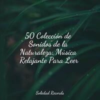 50 Colección de Sonidos de la Naturaleza: Música Relajante Para Leer
