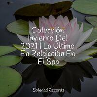 Colección Invierno Del 2021   Lo Último En Relajación En El Spa