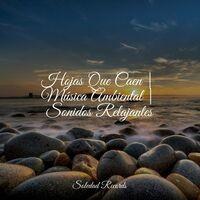 Hojas Que Caen   Música Ambiental   Sonidos Relajantes