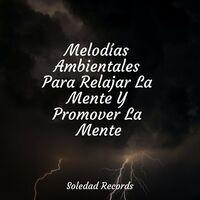 Melodías Ambientales Para Relajar La Mente Y Promover La Mente