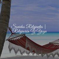Sonidos Relajantes   Relajación Y Yoga