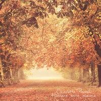 Höstens sista blomma