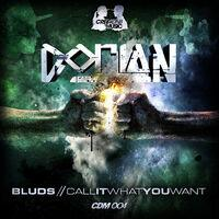 Bluds / Call It Want You Want