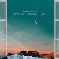 Cuarentena Sin Ti (Remix)