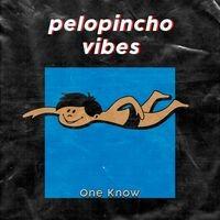 Pelopincho Vibes