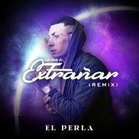 Lo Vas a Extrañar (Remix)