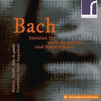 Sonata in D Major, BWV 1028: IV. Allegro