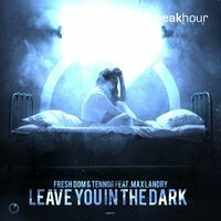 Leave You In The Dark (Feat. Max Landry)