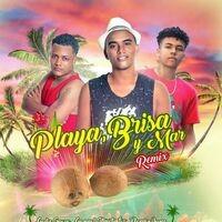 Playa, Brisa y Mar (Remix)