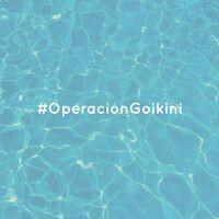 Operación Goikini