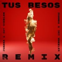 Tus Besos (Remix)