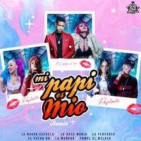Mi Papi Es Mio (feat. El Fecho RD, La Muñeka & Yomel El Meloso) (Remix)