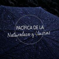 Lista de Reproducción Pacífica de la Naturaleza y Lluvias