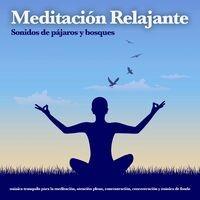 Meditación Relajante: Sonidos de pájaros y bosques, música tranquila para la meditación, atención plena, concentración, concentrac