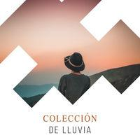 Colección Soñolienta de la Naturaleza y Lluvias