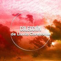 Colección Tranquila de Agua y Lluvia Constante
