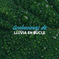 Grabaciones Melodiosas de Truenos y Lluvias en Bucle