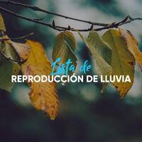 Lista de Reproducción Suave de Agua y Lluvia