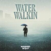 Water Walkin