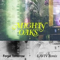 Forget Tomorrow (LAVIV Remix)