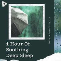 1 Hour Of Soothing Deep Sleep