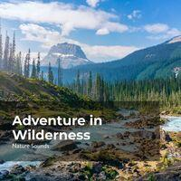 Adventure in Wilderness