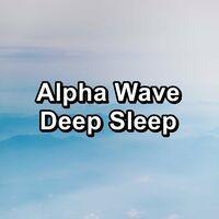 Alpha Wave Deep Sleep