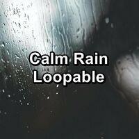 Calm Rain Loopable