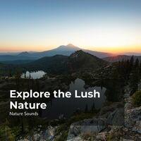 Explore the Lush Nature