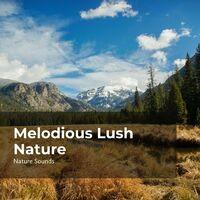 Melodious Lush Nature