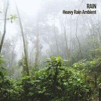 Nature: Heavy Rain Ambient