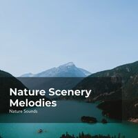 Nature Scenery Melodies