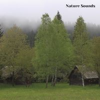 Nature Sounds Sleep Music, Session 5