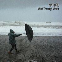 Nature: Wind Through Water