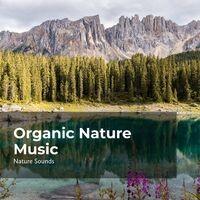Organic Nature Music