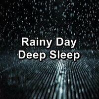 Rainy Day Deep Sleep