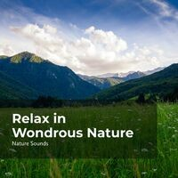 Relax in Wondrous Nature