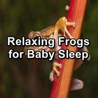 Relaxing Frogs for Baby Sleep