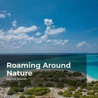 Roaming Around Nature