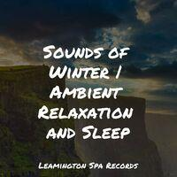 Sounds of Winter | Ambient Relaxation and Sleep