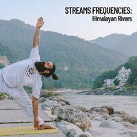 Stream Frequencies: Himalayan Rivers