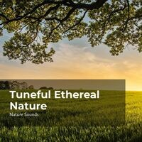Tuneful Ethereal Nature