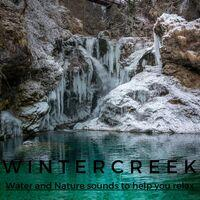 Wintercreek (Water and Nature sounds to help you relax)