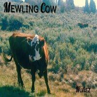 Mewling Cow
